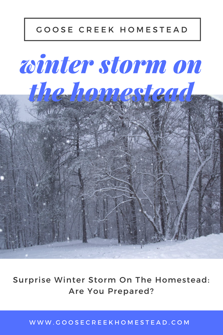 Surprise Winter Storm on the Homestead: Are You Prepared?